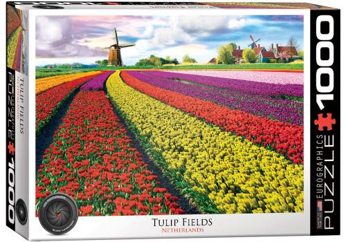TULIP FIELD - NETHERLANDS HDR PHOTOGRAPHY SERIES // 1000 PIE
