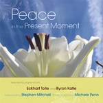 (H/B) PEACE IN THE PRESENT MOMENT