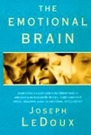 (P/B) THE EMOTIONAL BRAIN