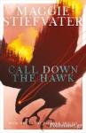 (P/B) CALL DOWN THE HAWK