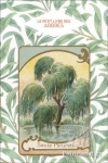 (H/B) THE LITTLE BOOK OF TREES