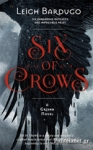 (P/B) SIX OF CROWS