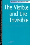 (P/B) THE VISIBLE AND THE INVISIBLE