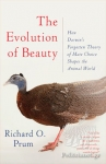 (P/B) THE EVOLUTION OF BEAUTY