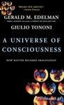 (P/B) A UNIVERSE OF CONSCIOUSNESS
