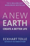 (P/B) NEW EARTH