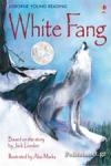(H/B) WHITE FANG