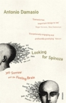 (P/B) LOOKING FOR SPINOZA
