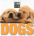 (H/B) DOGS (MINI CUBE)