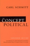 (P/B) THE CONCEPT OF THE POLITICAL