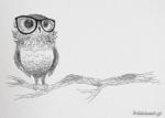 GLASSES OWL