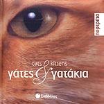 ΓΑΤΕΣ ΚΑΙ ΓΑΤΑΚΙΑ / CATS AND KITTENS