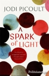 (P/B) A SPARK OF LIGHT