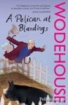 (P/B) A PELICAN AT BLANDINGS