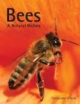(H/B) BEES