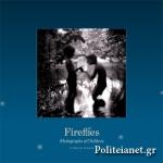 (H/B) FIREFLIES
