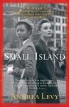 (P/B) SMALL ISLAND