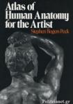 (P/B) ATLAS OF HUMAN ANATOMY FOR THE ARTIST