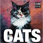 (H/B) CATS (MINI CUBE)