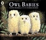 (P/B) OWL BABIES
